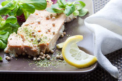 Salmon plate. Salmon dish with salad in a gourmet restaurant Royalty Free Stock Image