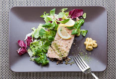 Salmon plate. European cuisine: salmon dish with salad Royalty Free Stock Images