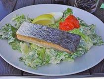 Salmon Plate Lizenzfreies Stockbild