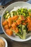Salmon Poke Bowl orgânico cru Fotografia de Stock Royalty Free