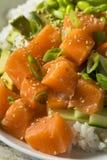 Salmon Poke Bowl orgânico cru Fotos de Stock Royalty Free