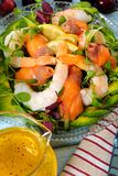 Salmon and prawn summer salad with citrus sauce close up Royalty Free Stock Image