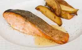 Salmon. Prepared salmon on the white plate Royalty Free Stock Image