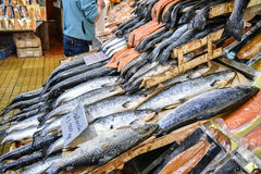 Salmon in Puerto Montt, Chile. Salmon for sale at Angelmo Fish Market in Puerto Montt, Chile Stock Images