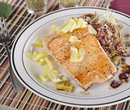 Salmon with  Quinoa Salad Royalty Free Stock Photos