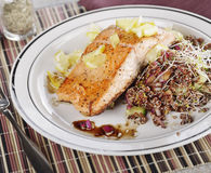 Salmon with  Quinoa Salad Royalty Free Stock Image