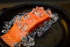 Salmon Raw Imagen de archivo libre de regalías