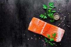 Salmon. Raw salmon fish on dark background royalty free stock photo