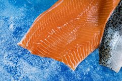 Salmon raw piece of with ingredients on table royalty free stock photo