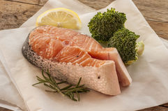 Salmon raw. salmon red fish steak with herbs Royalty Free Stock Photography