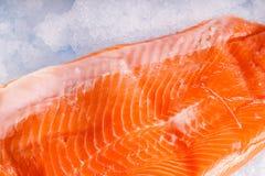 Salmon. Raw wild Salmon Fillet lying on ice Stock Image