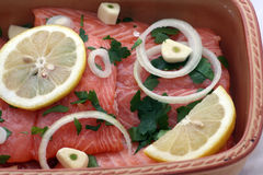 Salmon ready to be cooked. Dish of raw salmon with lemons and other seasonings, ready to be cooked royalty free stock images