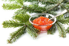 Salmon red caviar Stock Photography