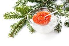 Salmon red caviar Stock Image