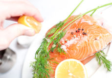 Salmon red fish Stock Image