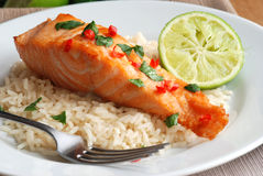 Salmon with rice Royalty Free Stock Photography