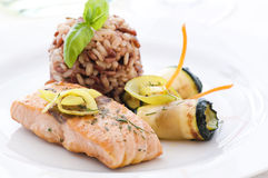 Salmon with rice Royalty Free Stock Photo
