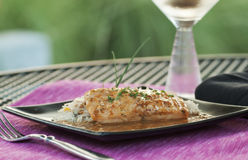 Salmon with Rice Royalty Free Stock Image