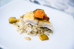 Salmon and rice Royalty Free Stock Image