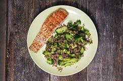 Salmon and Rice Royalty Free Stock Photos