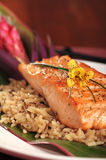 Salmon on rice. Fillet of broiled salmon on rice with a Hawaiian theme Royalty Free Stock Photo