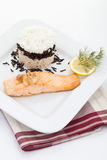 Salmon and rice tart garnished with dill,lemon slice Stock Photography
