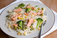 Salmon with rice and vegetables Royalty Free Stock Photo