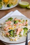 Salmon with rice and vegetables Stock Photography