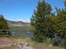 Salmon River - Айдахо Стоковые Изображения RF