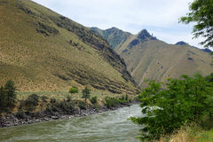 Salmon River bei Riggins, Idaho Stockfotos