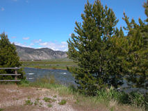 Salmon River - Idaho Royaltyfria Bilder