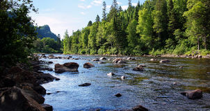Salmon river landscape. Beautiful small salmon river in Quebec, Canada Royalty Free Stock Photos
