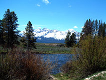 Salmon River near Stanley, Idaho 2 Stock Images