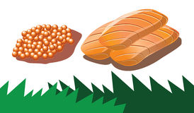Salmon roe and salmon sashimi in vector Royalty Free Stock Photos