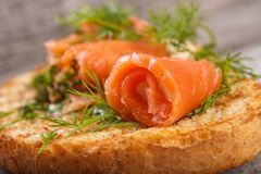 Salmon rolls. With dill on toasted bread , shallow dof stock photo