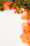 Salmon roses and foliage Royalty Free Stock Photo