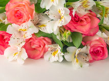 Salmon roses and white alstroemeria Royalty Free Stock Images
