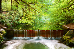 Salmon Run Dam Stock Images