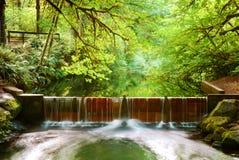 Salmon Run Dam. Water flows over a salmon run dam after recent rainfall Stock Images