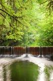 Salmon Run Dam Stock Photos