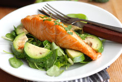 Salmon with salad Stock Photography