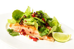 Salmon and Salad Royalty Free Stock Images