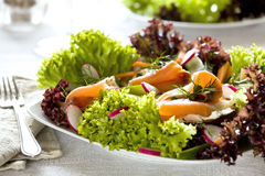 Salmon Salad Royalty Free Stock Images