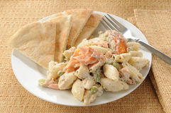Salmon salad Royalty Free Stock Photos
