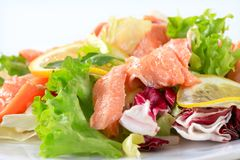Salmon salad Royalty Free Stock Photos