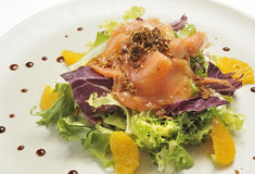 Salmon salad Stock Photography