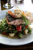 Salmon and Salad Royalty Free Stock Photography