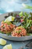 Salmon Salad Royalty Free Stock Photo