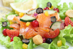 Salmon salad with berries fruit Royalty Free Stock Images