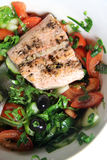 Salmon salad with black olives Royalty Free Stock Photo